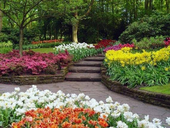 Парк цветов Кейкенхоф, Голландия